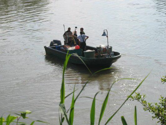 La pêche à la lamproie en Garonne - Nouvelle Vague épicerie de la pêche à Bordeaux